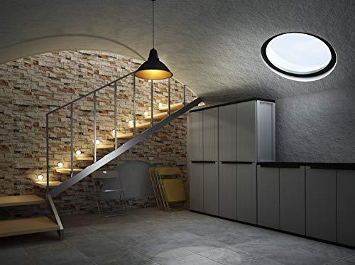 Terry Jline 368 Armario 2 Puertas con una estanteria Interna con 4 fijos. Capacidad máxima del Estante: 10 kg distribuidos de Forma Uniforme, Gris/Negro, 68x37,5x163,5 cm